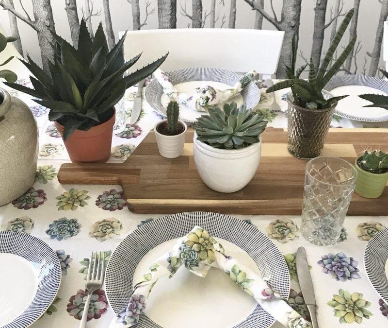 Buy of the Week: Succulents Love