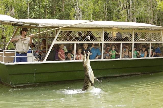 Australia: Hartley's Crocodile Adventures in Queensland