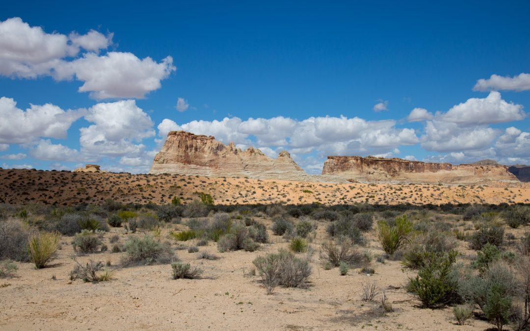 Photo of the Week – Arizona, USA