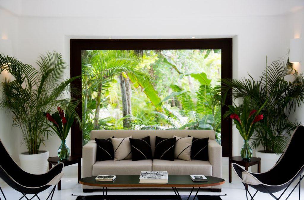 Room of the Week – Hotel Esencia