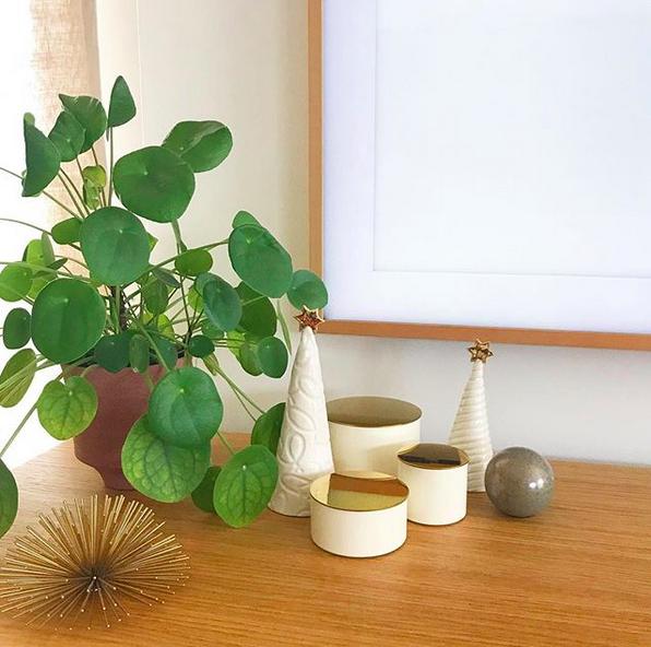 Buy of the Week – Ceramic Christmas Trees