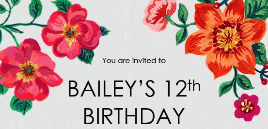 Fun – Bailey's Birthday Invitation