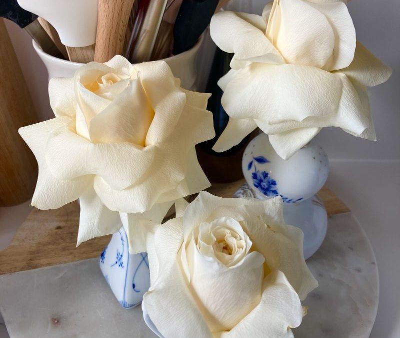 Friday Flowers – Roses Redux